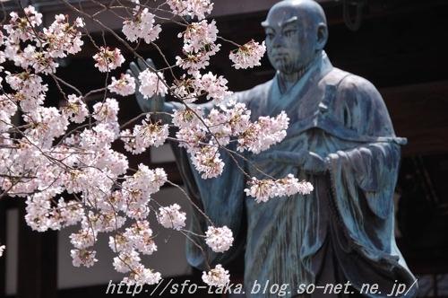 110410墨染寺3 [].jpg