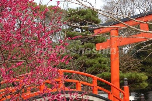 下鴨神社0702201.jpg